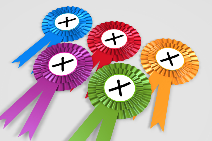 Party political rosettes