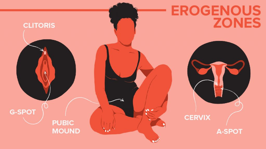 erogenous zones - woman